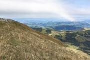 Bergwiese beim Gantrisch-Gipfel