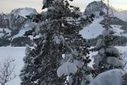 Gurnigel (Stierenhütte)