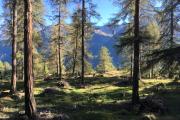 Schellen-Ursli-Weg (Guarda)