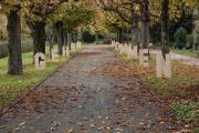 """04 GEHEN KOMMEN (Ausstellung """"ZEIT LOS LASSEN"""", Schosshaldenfriedhof, Bern/Ostermundigen 2019)"""