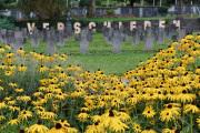 """07 VERSCHIEDEN (Ausstellung """"ZEIT LOS LASSEN"""", Schosshaldenfriedhof, Bern/Ostermundigen 2019)"""