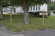 "25 NEUBEGINN ZURÜCK (Ausstellung ""ZEIT LOS LASSEN"", Schosshaldenfriedhof, Bern/Ostermundigen 2019)"