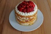 mandelbiskuit-erdbeer-torte-12