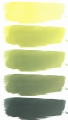 cyanotypiefluessigkeit_belichtungen