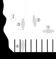 Anlegen an der Luvseite (ohne Segel)